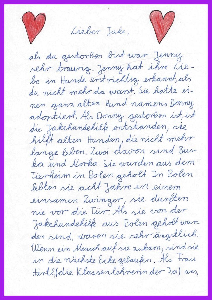 Mariekes Brief an Jake
