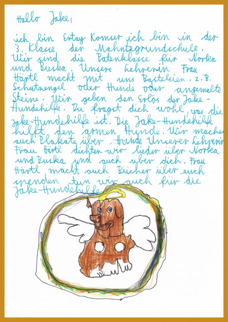 Ertays Brief an Jake