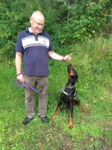 Gnadenhund Digby_2