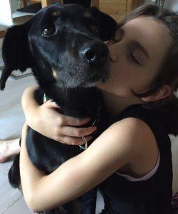 Gnadenhund Sara_2